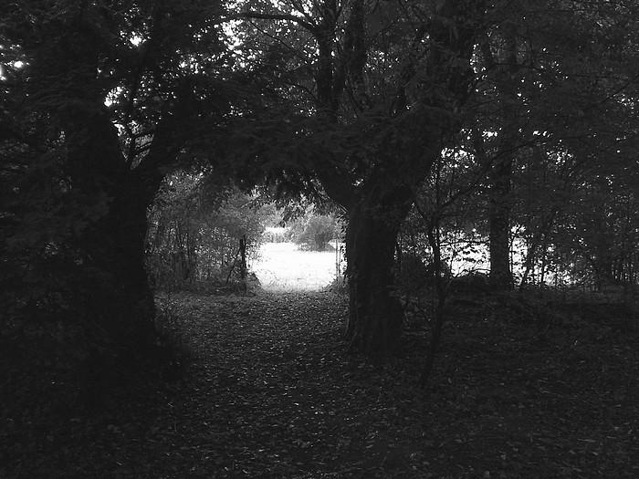 `Ombre et lumière` photo originale de J.Deffontaine